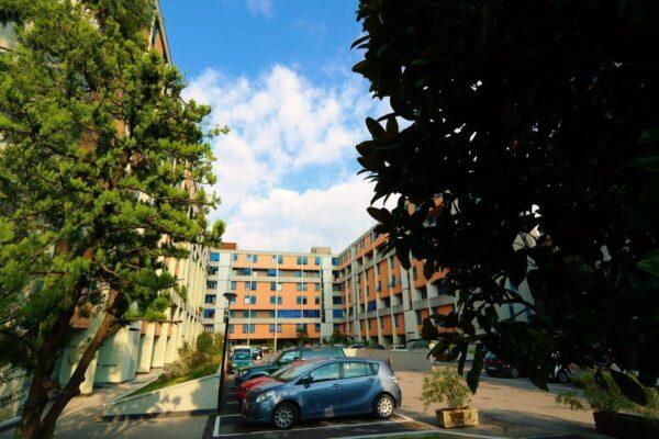 Ampio appartamento con terrazze